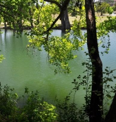 Kerrville River
